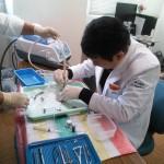 角膜内皮移植・白内障 手術実習