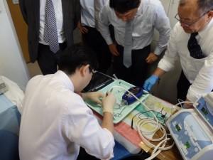 角膜内皮移植プレカット・角膜移植・白内障手術実習